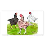 Assorted Cornish Rectangle Sticker