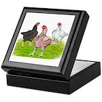 Assorted Cornish Keepsake Box