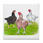 Assorted Cornish Tile Coaster
