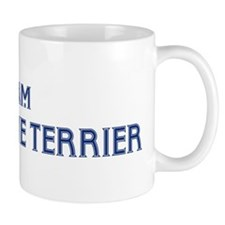 Team Kerry Blue Terrier Mug