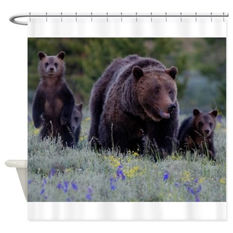 Grizzly Bear# 399 Triplets, June 2013 Shower Curta
