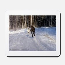 Greyhound Winter Wonderland Mousepad