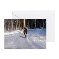 Racing Snow Hounds Greeting Cards (Pk of 10)