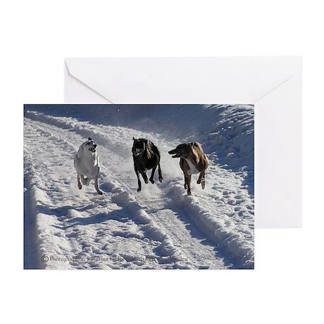 Snowy greyhound fun Greeting Cards (Pk of 10)
