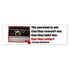 Do They Suffer? Bumper Bumper Sticker