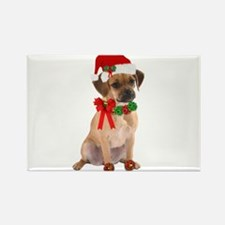 Christmas Puggle Rectangle Magnet (100 pack)