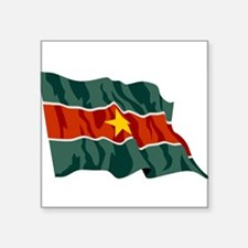 """Suriname-2-[Converted].jpg Square Sticker 3"""" x 3"""""""