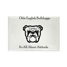bulldogtee Magnets
