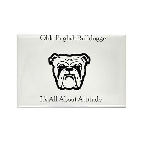 bulldogtee Magnets