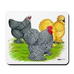 Feather-legged Bantams Mousepad