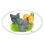 Feather-legged Bantams Oval Sticker