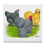 Feather-legged Bantams Tile Coaster