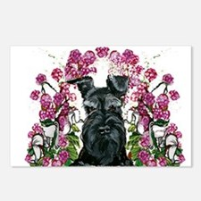 Black Schnauzer Postcards (Package of 8)