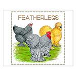Feather-leg Trio Small Poster