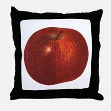 Vintage Food, Red Delicious Organic Apple Fruit Th