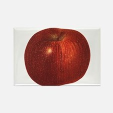 Vintage Food, Red Delicious Organic Apple Fruit Re