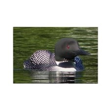 Lone Loon Rectangle Magnet (100 pack)