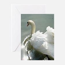 Beautiful white swan Greeting Cards (Pk of 20)