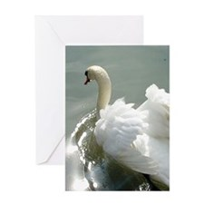 Beautiful white swan Greeting Card