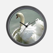 Beautiful white swan Wall Clock