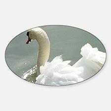 Beautiful white swan Decal