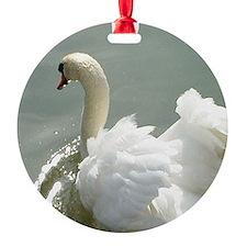 Beautiful white swan Ornament