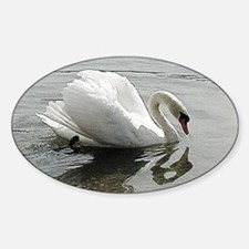 White swan with shadow Decal