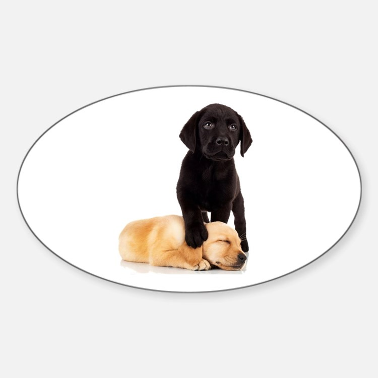 Labrador Playmates Decal