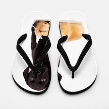 Labrador Playmates Flip Flops