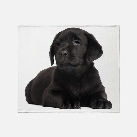 Labrador Retriever Throw Blanket