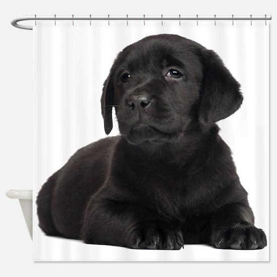 Labrador Retriever Shower Curtain