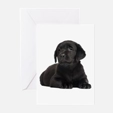 Labrador Retriever Greeting Cards (Pk of 10)