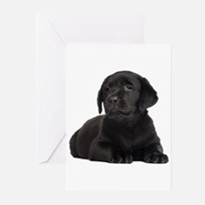 Labrador Retriever Greeting Cards (Pk of 20)