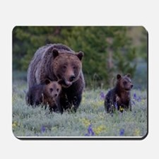 MAMMA GRIZZLY and CUBS Mousepad