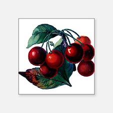 Vintage Cherry Big Red Juicy Cherries Fruit Sticke