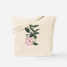 Vintage Pink Morning Glory Tote Bag