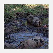 Muddy Piggies Tile Coaster