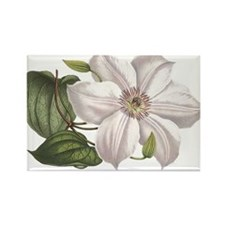 White Clematis Rectangle Magnet