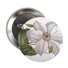 "White Clematis 2.25"" Button"