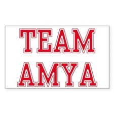 TEAM AMY Rectangle Decal