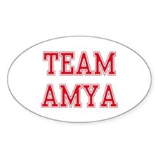 TEAM AMY Oval Decal