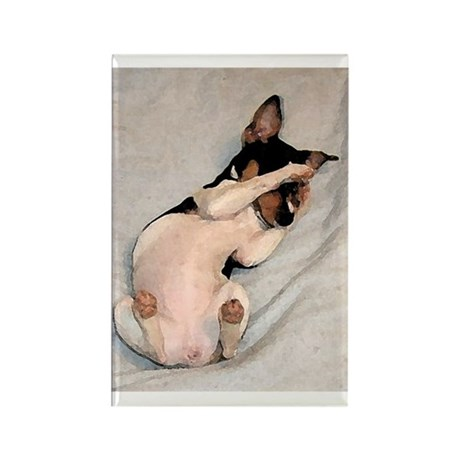 RAT TERRIER Rectangle Magnet