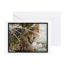 Serval Greeting Cards (Pk of 10)