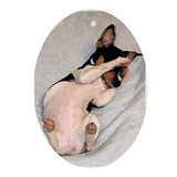 Rat terrier Ornaments