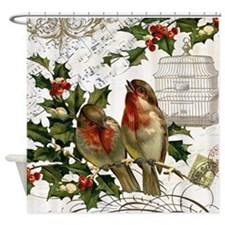 Vintage French Christmas birds and birdcage Shower