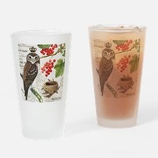 Vintage winter garden owl and berries Drinking Gla