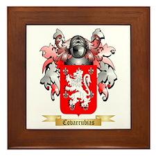 Covarrubias Framed Tile