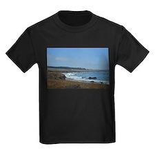 Beach near Big Sur, CA T-Shirt
