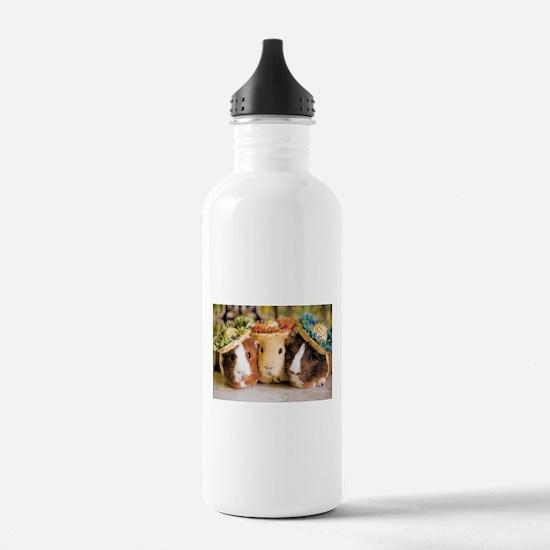 Aloha Guineas Water Bottle