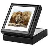 Lions love Square Keepsake Boxes